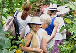 debbie jungle womens group tours390px